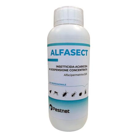 alfasect