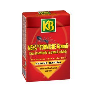 PN ITA Nexa formiche granuli img.rid